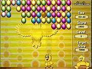 Civciv Yumurtaları